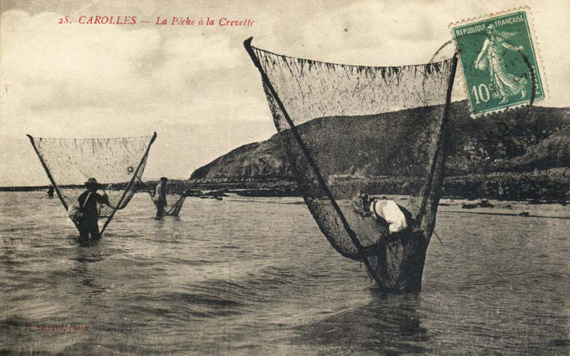 Shrimping After Working Conditions