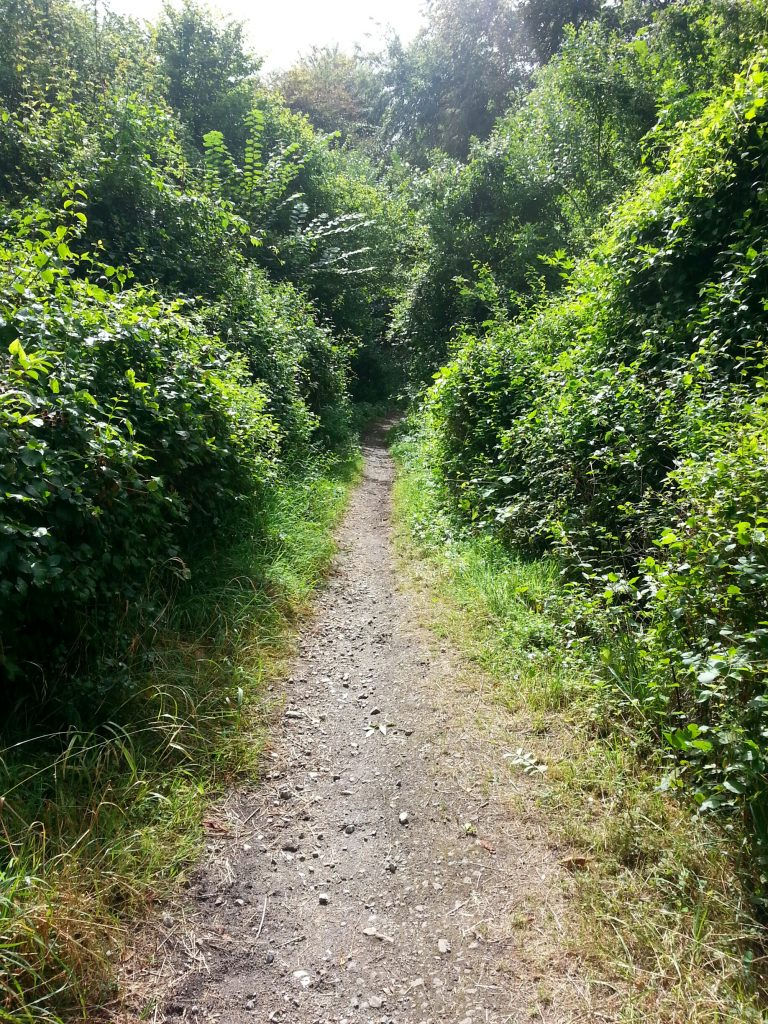 Along the Bridleway – On Horseback